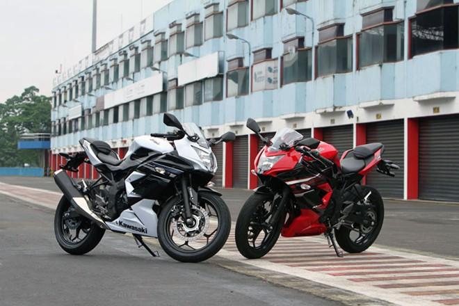 Kawasaki trinh lang Ninja RR Mono 250cc