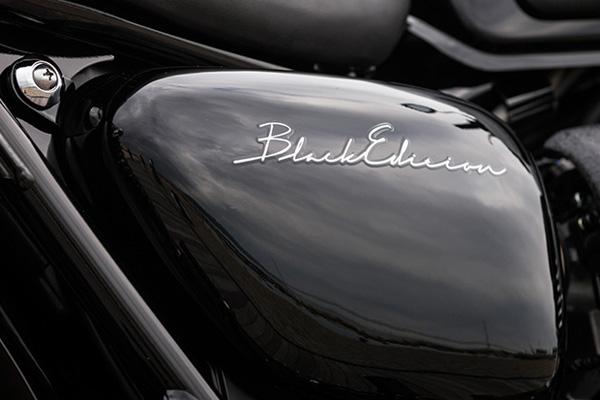 Kawasaki W800 Black Edition 2015 vua duoc cho ra mat - 5