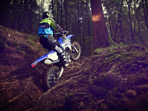 Yamaha ra mat bo doi xe dua dia hinh 250 phan khoi moi - 17