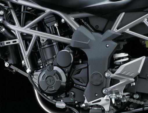 Kawasaki Ninja 250SL va Z250SL ra mat thi truong Chau Au tai EICMA - 11
