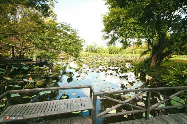 Coco Beach Camp khu cam trai dep nhu tien phai ghe o Lagi Binh Thuan - 15