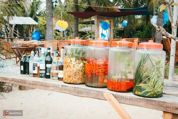 Coco Beach Camp khu cam trai dep nhu tien phai ghe o Lagi Binh Thuan - 17