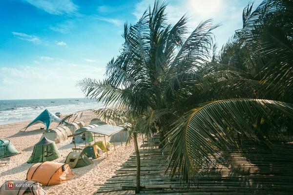 Coco Beach Camp khu cam trai dep nhu tien phai ghe o Lagi Binh Thuan - 22