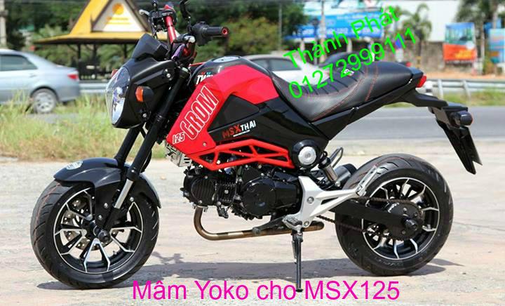 Do choi Honda MSX 125 tu A Z Po do Kinh gio Mo cay Chan bun sau de truoc Ducati Khung suo - 46