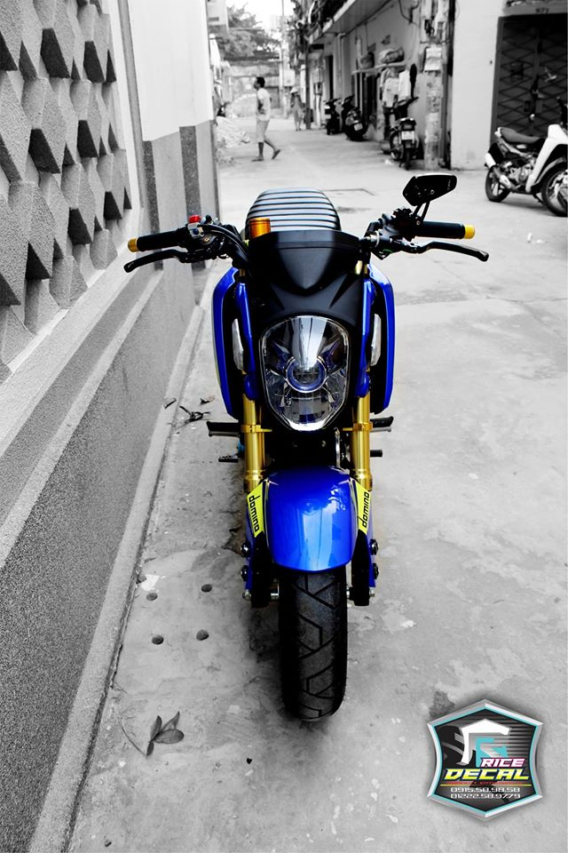 Honda MSX chiec mini bike bien the nhieu phien ban do - 2