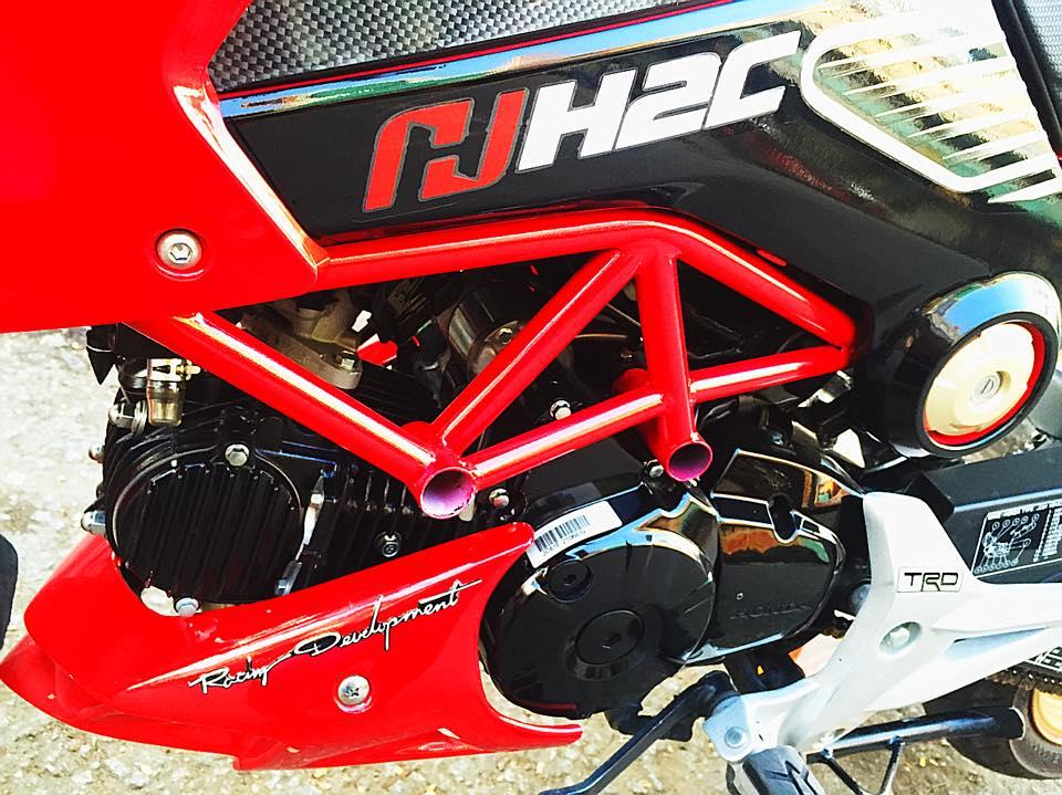 Honda MSX do phong cach voi phien ban H2C - 2