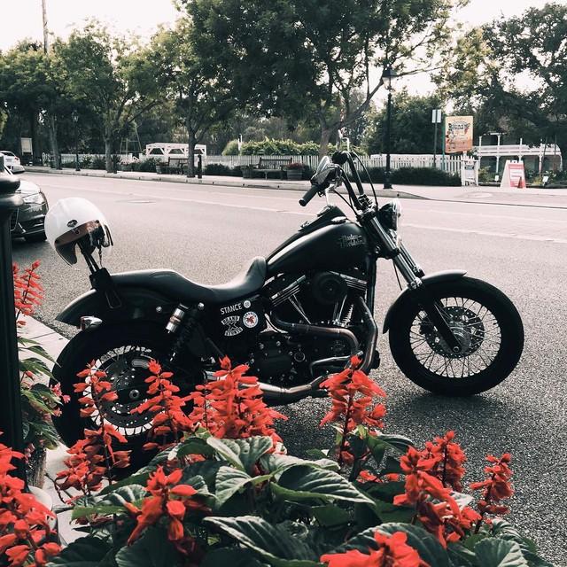 Mo to va Biker trong bo anh chat lu day phong cach tren Instagram - 10