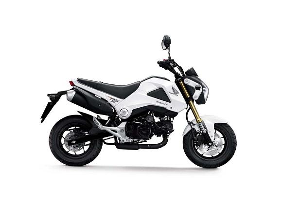 So sanh Honda MSX 125 Kawasaki Z125
