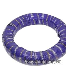 Chuyen vo Michelin danh cho xe may voi day du size kieu dang - 2