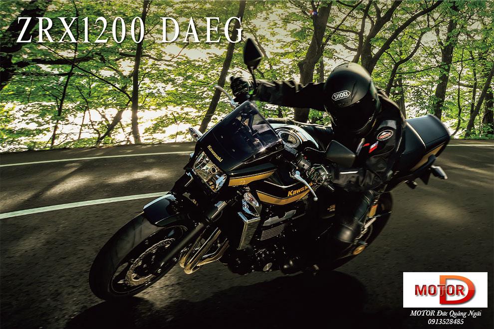 Trum Nakedbike Kawasaki Luc si co bap ZRX1200 DAEG tren duong ve Ha Noi - 10
