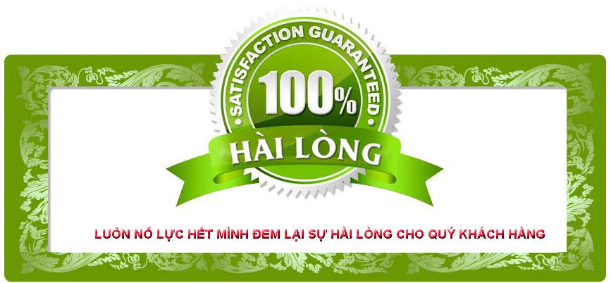 Viet Thanh dich vu bao duong va sua chua xe dien tai nha - 2
