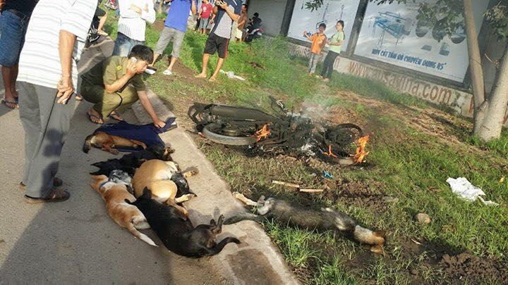 Chay Exciter 2010 trom cho cai ket DANG bi danh SML cung con ngua chien bi thieu rui - 2