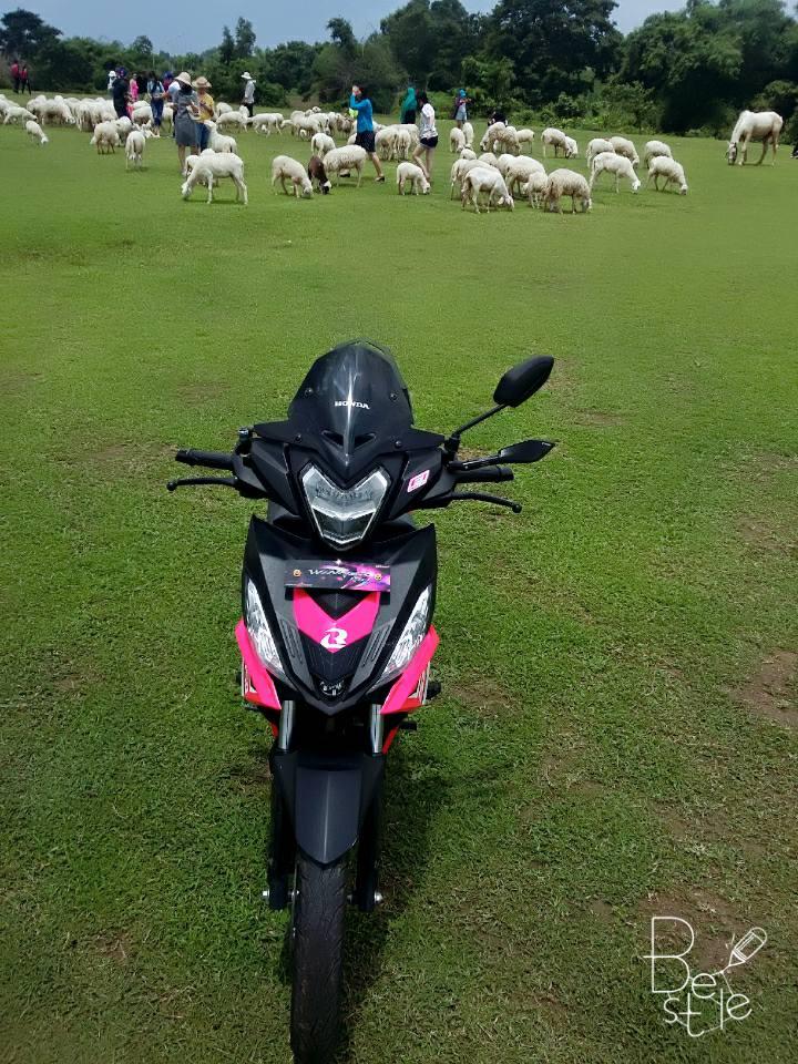 Winner 150cc phong cach hong khoe dang ben dan cuu non - 3