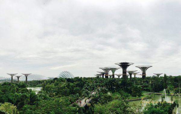 Kinh nghiem du lich bui Singapore mot minh - 3