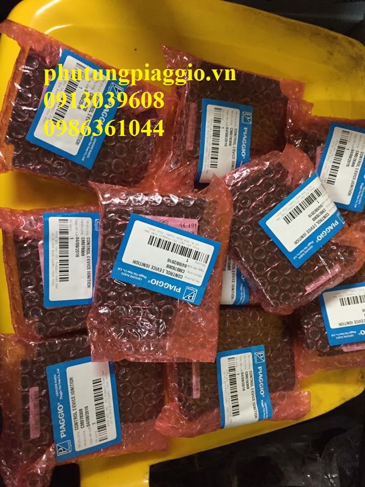 Phu Tung Piaggio HOA DA 429 Giai Phong LxLx VLibertyFlyZipETGTVespa C - 20