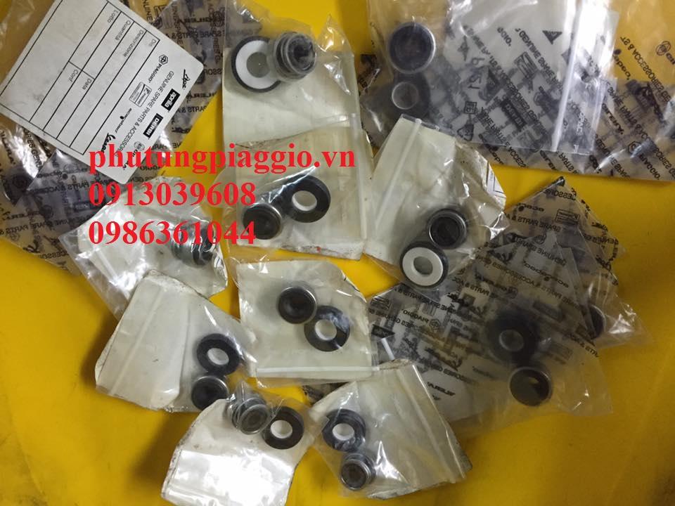 Phu Tung Piaggio HOA DA 429 Giai Phong LxLx VLibertyFlyZipETGTVespa C - 27