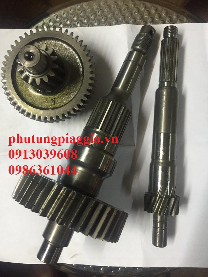 Phu Tung Piaggio HOA DA 429 Giai Phong LxLx VLibertyFlyZipETGTVespa C - 34