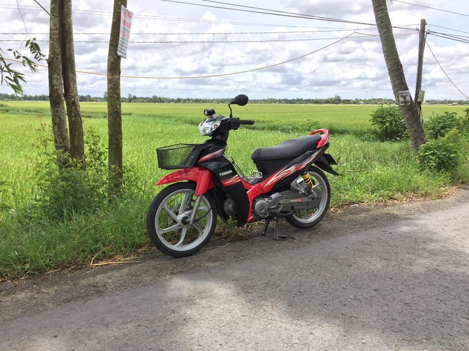 Yamaha Sirius do kieng nhe nhang khoe dang cung canh dong lua - 2