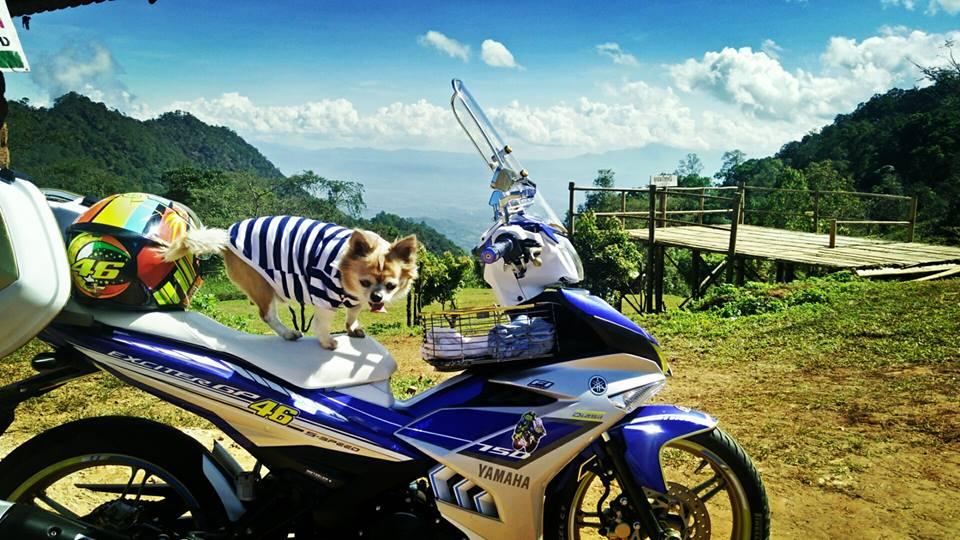 Bo anh chu cun dang yeu di phuot tren chiec Exciter 150 do cua biker nuoc ban - 3