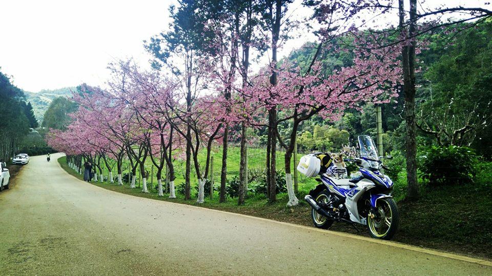 Bo anh chu cun dang yeu di phuot tren chiec Exciter 150 do cua biker nuoc ban - 12