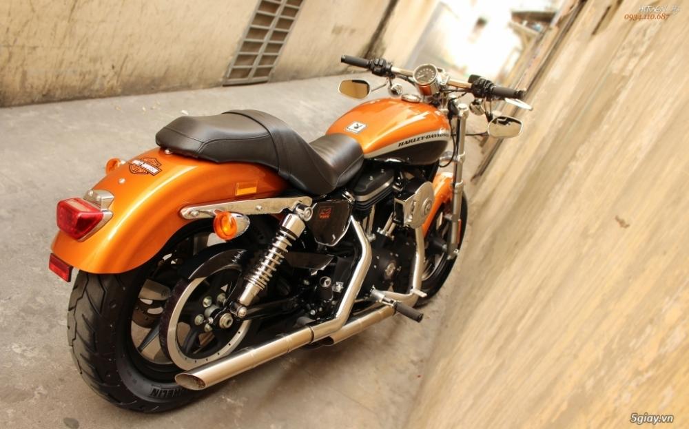 ___ Can Ban ___HARLEY DAVIDSON 1200 Custom CA ABS 2014 Limited___ - 8