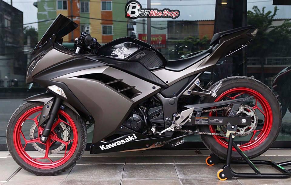 Kawasaki Ninja 300 do kich doc voi than hinh Matte Black - 13