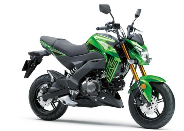 Kawasaki Z125 Pro 2019 ra mat voi phien ban tem moi day ca tinh - 2