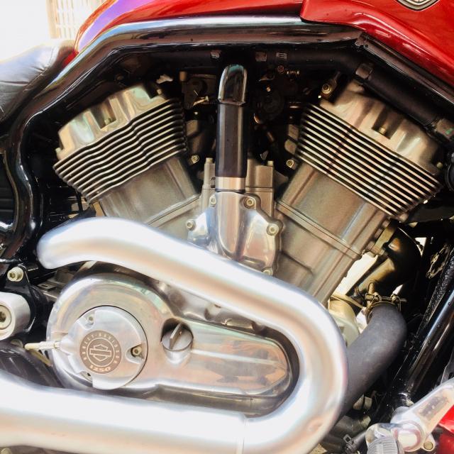 Harley Davidson VRod muscle 1300cc 2010 HQCN xe My hang hiem - 8