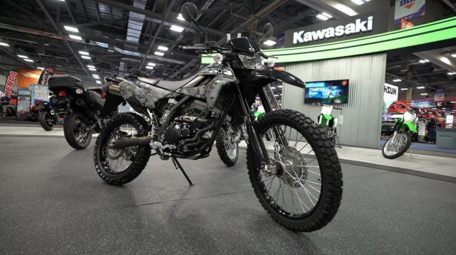 Bang gia xe Kawasaki tai Viet Nam thang 022019 - 4