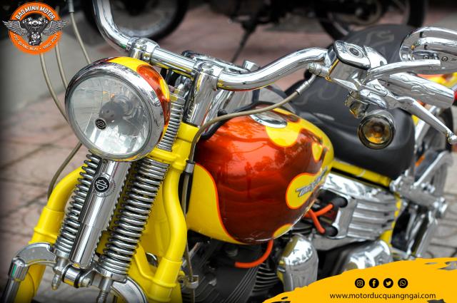 Sieu Pham Hang Hiem Harley Davidson CVO Softail Springer 2009 - 4