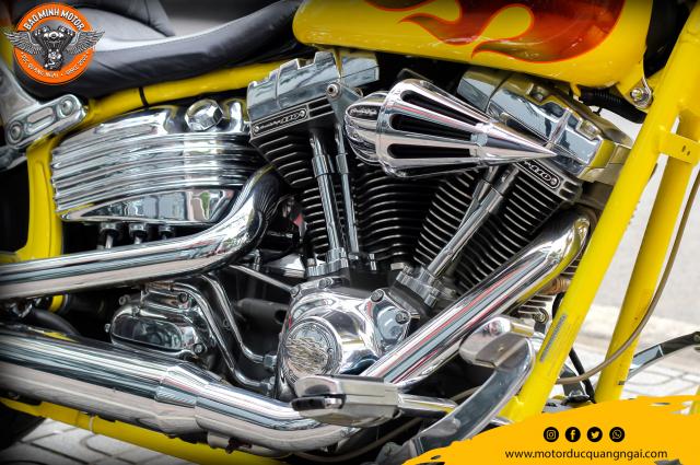 Sieu Pham Hang Hiem Harley Davidson CVO Softail Springer 2009 - 10