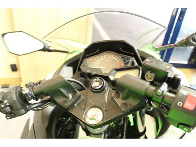 Kawasaki Ninja 250 2021 xanh - 2