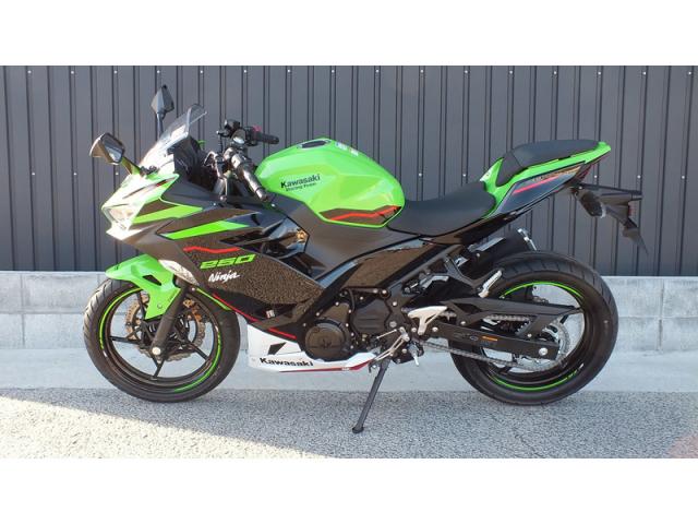 Kawasaki Ninja 250 KRT Edition 2021 xanh la - 2
