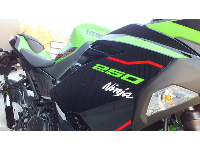 Kawasaki Ninja 250 KRT Edition 2021 xanh la - 4